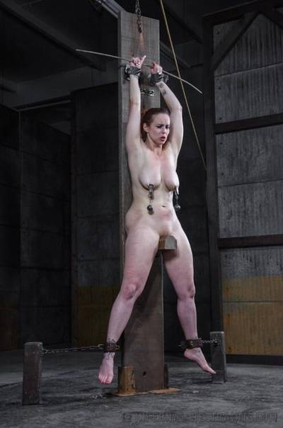 She could feel the weight of the clamps on her nipples pushing her down harder onto the two dildos mounted on the bar
